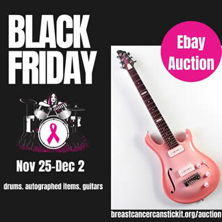 Black Friday Auctions